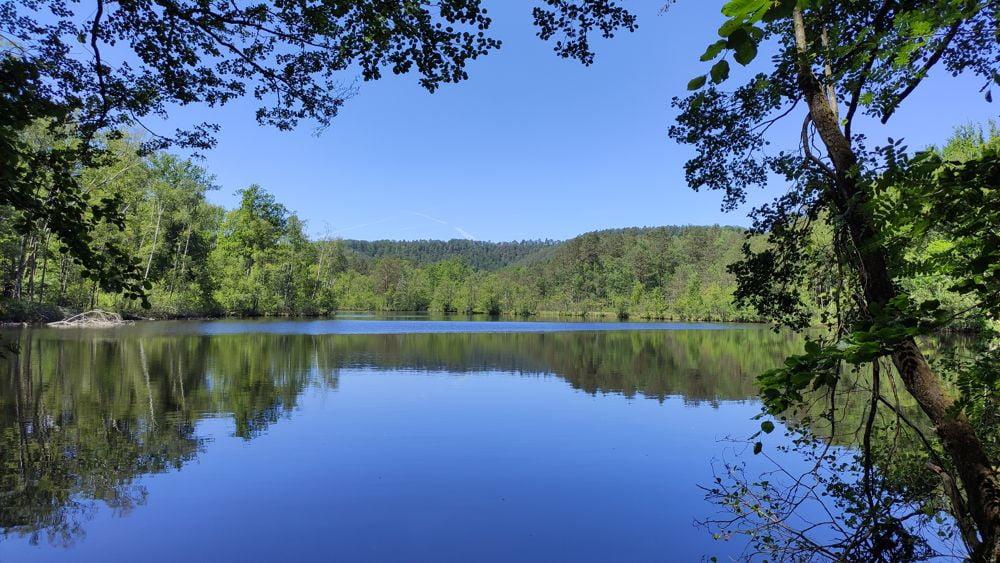 L'étang du Erbsenweiher